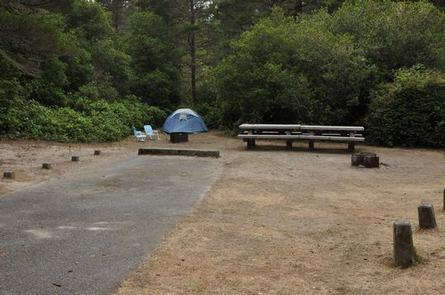Preview photo of Waxmyrtle Campground