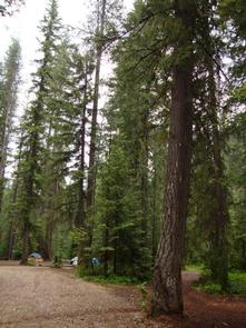 Preview photo of Grouse Creek Group Site