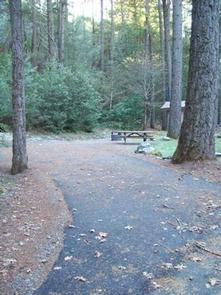 Dillon Creek Campground | Recreation gov