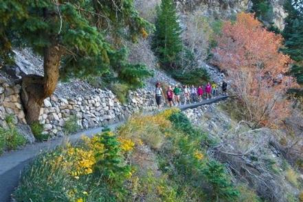 People hiking down trail surrounded by fall leaves and treesVisitors hiking down cave trail in the fall