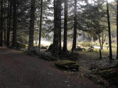 Preview photo of Sunnyside Campground