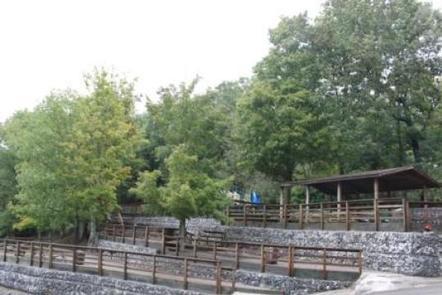 Fall Creek picnic areaFall Creek picnic area and shelter