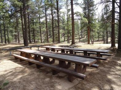 Preview photo of Buckeye Recreation Area (CO)