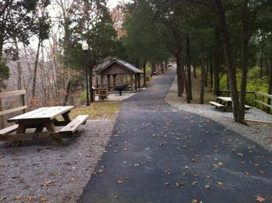 Trail at MillTrail and picnic area at Mill Springs Mill