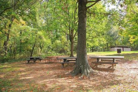 Fort Dupont Park Picnic AreasPicnic area A, there are picnic tables, a grill and bathroom facilities nearby