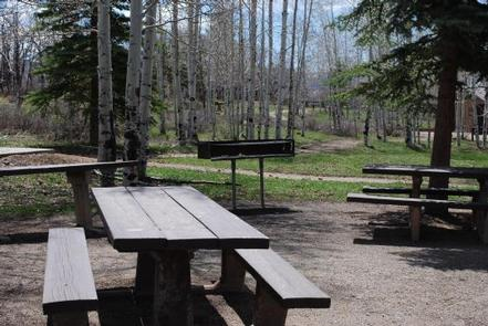 TRANSFER GROUP CAMPGROUND
