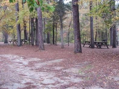 Blanchard Springs Recreation Area | Recreation gov