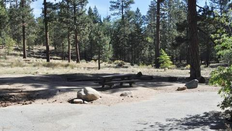 Barton Flats Campground Picnic Tables in the shade