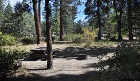 Picnic Table & Fire Pit at Hanna Flat Campground