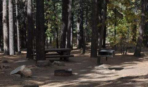 Naturally Shaded Picnic Tables, Fire Ring and BBQ Grill at Pineknot Campground