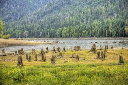 Bumping Lake Campground