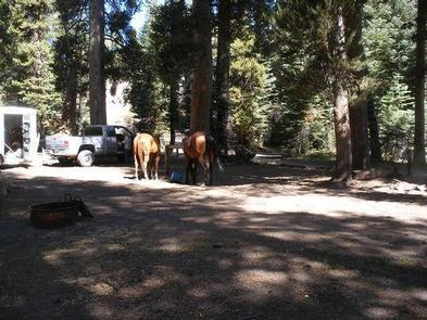 Preview photo of Agnew Horse Camp