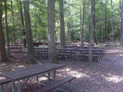 GREENBELT PARK PICNIC AREA- Laurel Picnic AreaEnjoy a family reunion or company picnic in the Urban Oasis (picture is Laurel Picnic Area)
