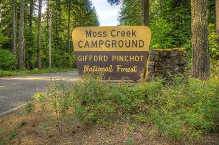 Moss Creek Campground, White Salmon, Washington | REI