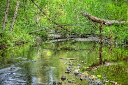 White Salmon Wild & Scenic River Campground, White Salmon