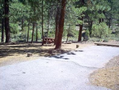 LOGGER CAMPGROUNDLogger Campground