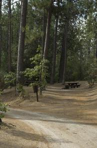 Photo of Crane Valley