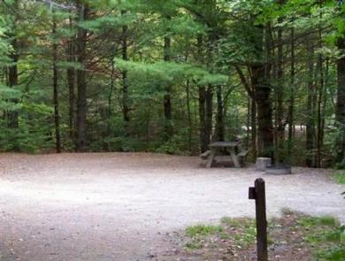 Chittenden Brook Campground