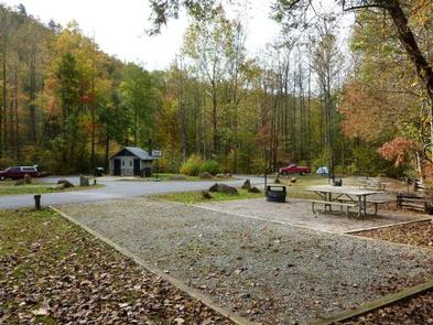 CURTIS CREEK CAMPGROUND (NC)