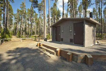 Contorta Flat Campground