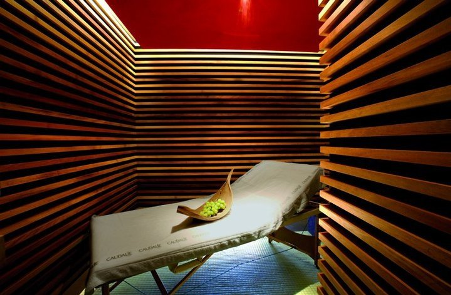 Caudalie Vinotherapie SpaThe Plaza is home to the only Vinotherapie Spa in the United States, boasting 14 treatment rooms and a world-famous menu of treatments featuring grape and vine active patents.