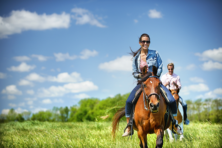 Outdoor AdventuresFamilies of all shapes and sizes will find adventure at The American Club- ranging from junior golf, hikes, boat rentals, horseback riding and much more.