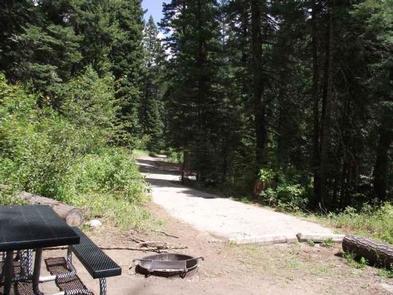 COLD SPRINGS CAMPGROUND, campsiteCampsite