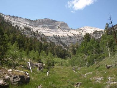 Pale limestone cliffs soaring above a green meadowMt Washington at Great Basin National Park