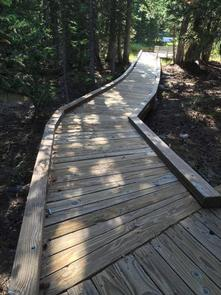 Raised boardwalk through a shady Douglas Fir forestBoardwalk hike at top of the Wheeler Peak Scenic Drive