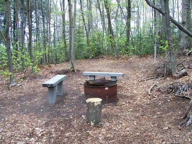 Preview photo of Preservation Point Campsite on Grand Island
