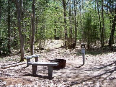 Preview photo of Hardwood Campsite on Grand Island