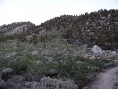 Preview photo of Palisades Group Campground
