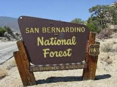 San Bernardino National Forest Sign