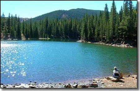 Preview photo of Bear Lake Campground (CO)