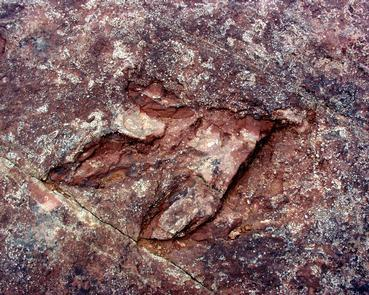 Dinosaur TrackAlmost 200 million years old, these tracks were discovered near its eastern shores and have become an attraction all their own.
