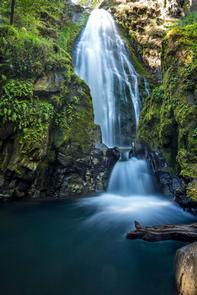 N. Umpqua Wild & Scenic River