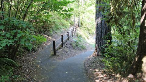 Cavitt Creek trail