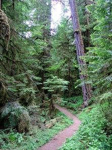 Wolf Creek Recreation Area