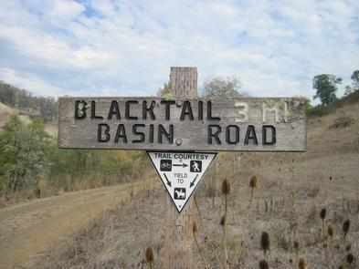 Blacktail basin road sign