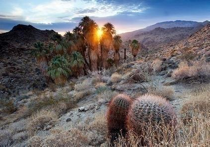 Santa Rosa San Jacinto Mountains National MonumentRising abruptly from the desert floor, the Santa Rosa and San Jacinto Mountains National Monument reaches an elevation of 10,834 feet.