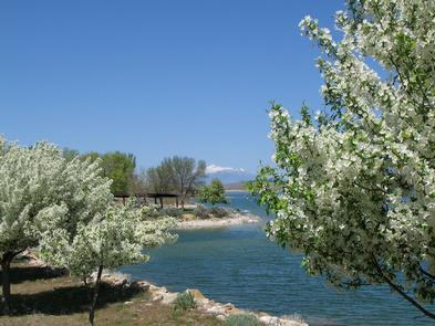 Springtime in YubaThe tranquil reservoir in Central Utah comes alive with warming spring temperatures.