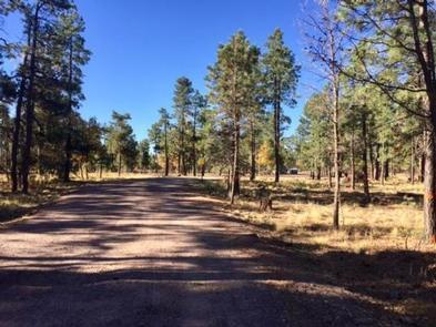 Preview photo of Mogollon Campground