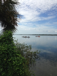 Guided Mosquito Lagoon Canoe Tour in the Apollo DistrictCanoe the lagoon