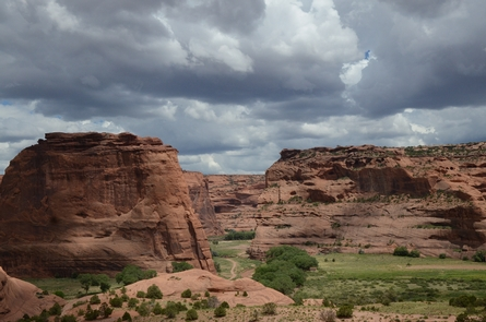"Canyon ViewThe Navajo people call the canyon Tsegi meaning ""within the rocks"""