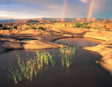 Preview photo of Canyonlands National Park