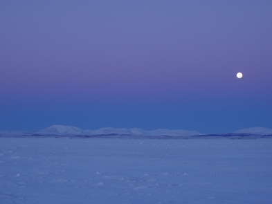 Winter MoonJanuary light and a bright moon at 2 pm over the Igichuk Hills in Cape Krusenstern National Monument.