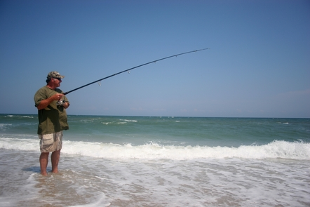 Surf fishingSurf fishing is a popular pastime at the beach
