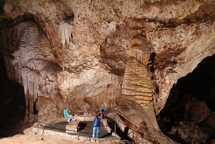Preview photo of Carlsbad Caverns National Park