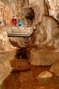Longfellow's BathtubA spectacular view from Longfellow's Bathtub, a long cave pool, inside the Big Room.