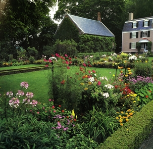 The Gardens Located at Old House at Peace fieldThe gardens located by Old House at Peace field bloom in every color you can imagine.